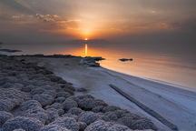 حریم پارک ملی دریاچه ارومیه پایش مستمر می شود