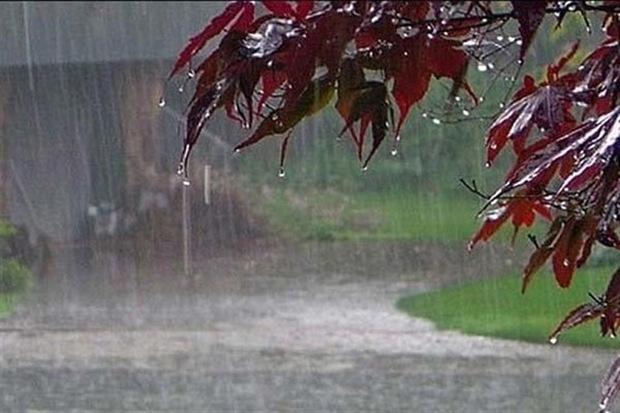 رشد بارش باران در قزوین