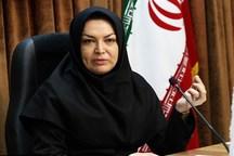 اجرای طرح کتابخانه گردی 17 اسفند در همدان