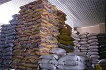 پنج هزار تن برنج هندی در هرمزگان توزیع شد