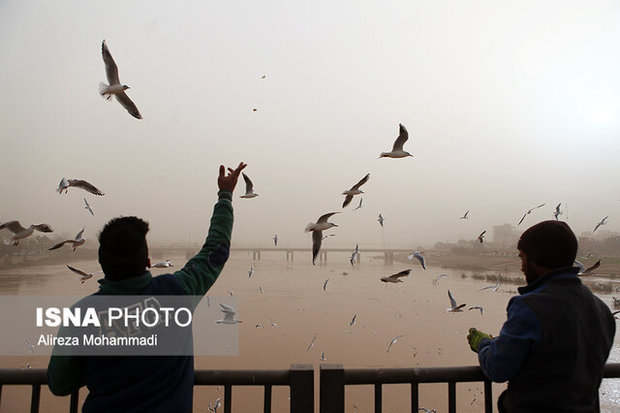 پیشبینی گرد و غبار برای امروز و فردای خوزستان