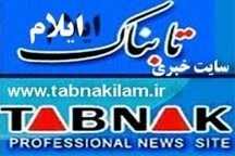 یکه تازی نیمه شاخص ها در انتخابات شورای شهر ایلام