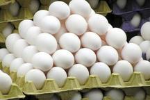 مرغ و تخم مرغ در رقابت برای افزایش قیمت