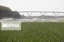 اجرای سامانه آبیاری نوین در حدود ۷ هزار هکتار اراضی شیروان