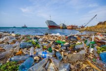 مصرف بی رویه پلاستیک عامل تخریب محیط زیست بوشهر است