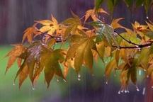 بارش های چهارمحال و بختیاری به 30 میلیمتر رسید