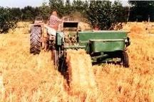 ۶ درصد از علوفه کشور در کردستان تولید میشود