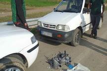شکارچیان متخلف در بیله سوار مغان دستگیر شدند