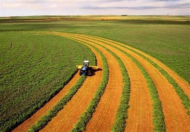 پروانه واحدهای کشاورزی تاریخ گذشته در قزوین ابطال می شود