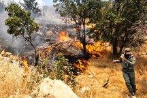 آتش دوباره به جان جنگل های منطقه صوفی ملکشاهی افتاد