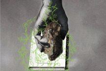 برگزیدگان جشنواره«طبیعت بیجان،دستهای جان بخش»مشخص شدند
