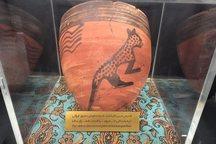 قدیمی ترین نقش یوزپلنگ ایرانی درقم کشف شد