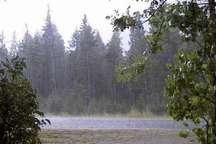 33 میلیمتر باران در قلعه رئیسی بارید