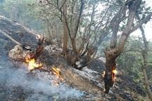 کهگیلویه و بویراحمد با کمبود تجهیزات مهار آتش در جنگل ها مواجه است