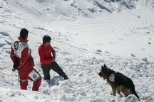 تلاش برای یافتن کوهنوردان مفقودشده در شاهرود ادامه دارد