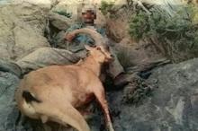 شکارچی متخلف پس از 2 ماه در کهگیلویه و بویراحمد دستگیر شد
