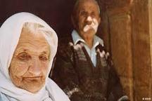 بیش از 48 هزار سالمند تحت پوشش کمیته امداد آذربایجان غربی است