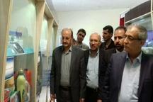 معاون وزیر از نمایشگاه شهرک های صنعتی قزوین بازدید کرد