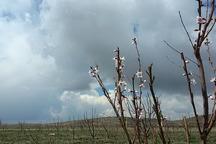 مردم استان اردبیل نخستین روز بهار را با باران آغاز کردند