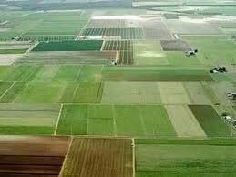 اجرای طرح کاداستر در ۱۱۴ هزار هکتار از اراضی کشاورزی استان چهارمحال وبختیاری