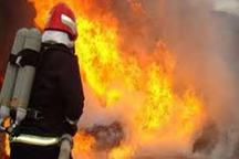 آتش در کارخانه لاستیک بارز کرمان مهار شد