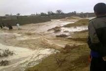 سیل به 4 شهرستان خراسانجنوبی خسارت وارد کرد