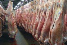 پارسال 56 هزار و 500 تن گوشت قرمز و سفید در ساوه تولید شد