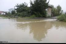 بارش 88 میلیمتر باران باعث آبگرفتگی معابر آستارا شد