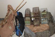 ۲ شکارچی متخلف در پارس آباد مغان دستگیر شدند
