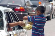 فرماندار بویراحمد: کودکان کار یاسوج تا یک ماه آینده ساماندهی میشوند