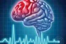27 درصد علل مرگ مغزی در شمال شرق کشور بر اثر تصادفات است
