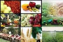 دوره های آموزشی علمی کاربردی برای کشاورزان شرق اصفهان برگزار می شود