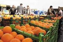 عرضه 900تن پرتقال و سیب شب عید در مازندران