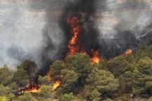 پارک ملی گلستان دچارآتش سوزی شد