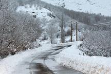 برف مدارس چادگان و فریدونشهر را تعطیل کرد
