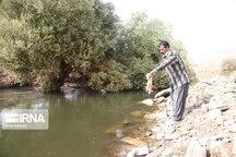 پرونده قضایی برای عامل آلودهکننده رودخانه قرهسو تشکیل میشود