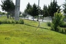 سرانه فضای سبز در شهر باشت به 6.5متر مربع رسید