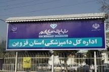 توزیع کننده گوشت مرغ غیرمجاز در قزوین روانه زندان شد
