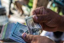 هشت هزار میلیارد ریال پرونده تخلف ارز دولتی تشکیل شد