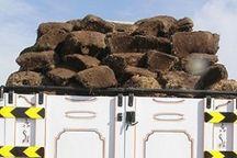 ۱.۵ تن خاک پیت و ۲۳ اصله چوب آلات قاچاق در استان اردبیل کشف و ضبط شد