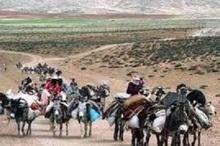 ممنوعیت کوچ زودهنگام عشایر به مناطق ییلاقی چهارمحال و بختیاری