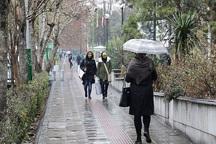 بارش نزولات آسمانی در بوکان 1.5 برابر افزایش یافت