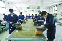 42 درصد دانش آموزان خراسان جنوبی جذب هنرستان ها شدند