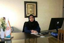 راهاندازی 4 گروه همیار زنان سرپرست خانوار در قزوین تا پایان امسال