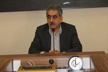 برداشت 750 هزار تن نیشکر از سطح مزارع شرکت سلمان فارسی