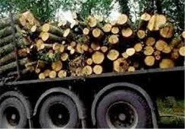 18 تن چوب قاچاق در اهر کشف شد