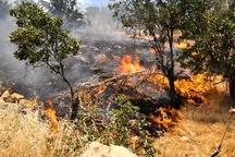 آتشسوزی 10 هکتار از اراضی ملی الموت غربی  آتش پس از 6 ساعت مهار شد