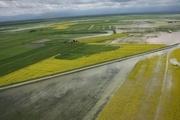 کشاورزی در فارس پس از سیل چه خواهد شد