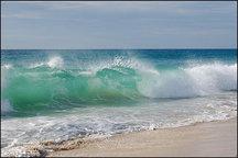 سواحل جنوبی خلیج فارس در استان بوشهر مواج میشود
