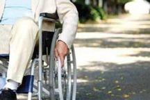 معلولان ورزشکار یزد، مشکل رفت و آمد دارند